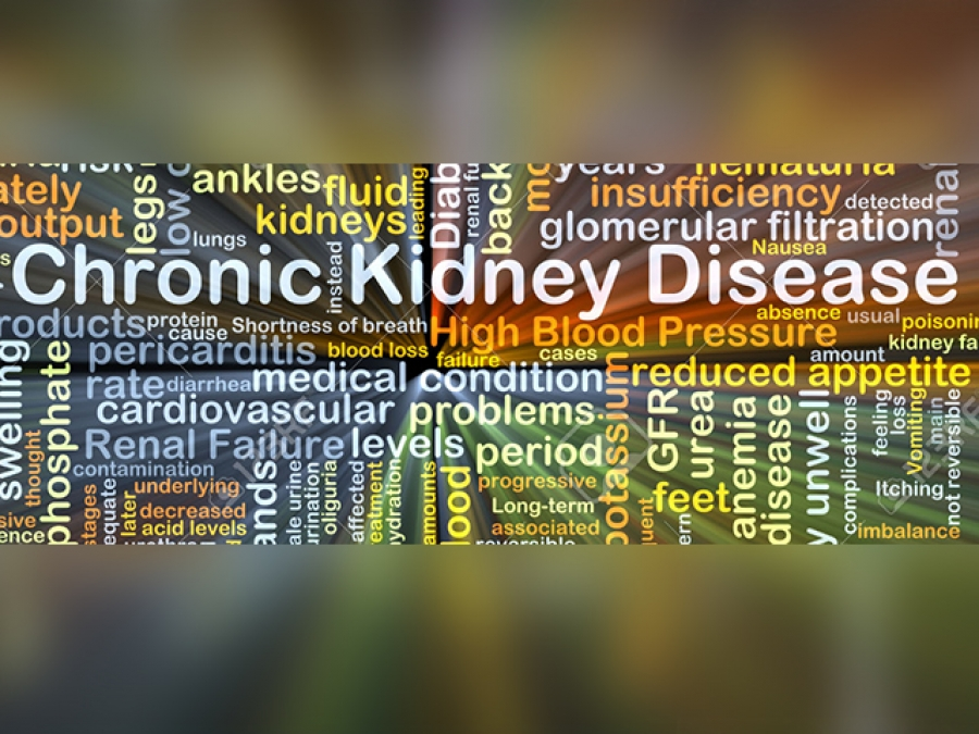 CHRONIC KIDNEY DISEASE: PREVENTION IS DEFINITELY BETTER THAN CURE